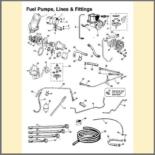 Fuel Pumps, Lines & Fittings
